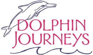 Dolphin-Journeys-300x178